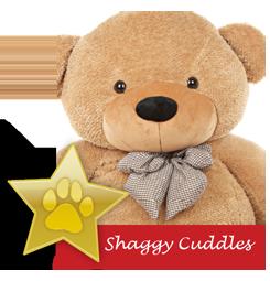 Shaggy Cuddles famous teddy bear