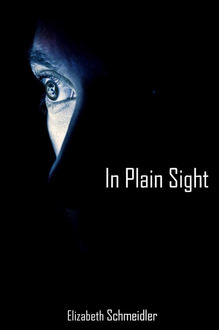 In Plain Sight by Elizabeth Schmeidler