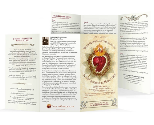 "Large Font Surrender Novena Trifold Holy Cards (8"" X 4.25"" folded)"