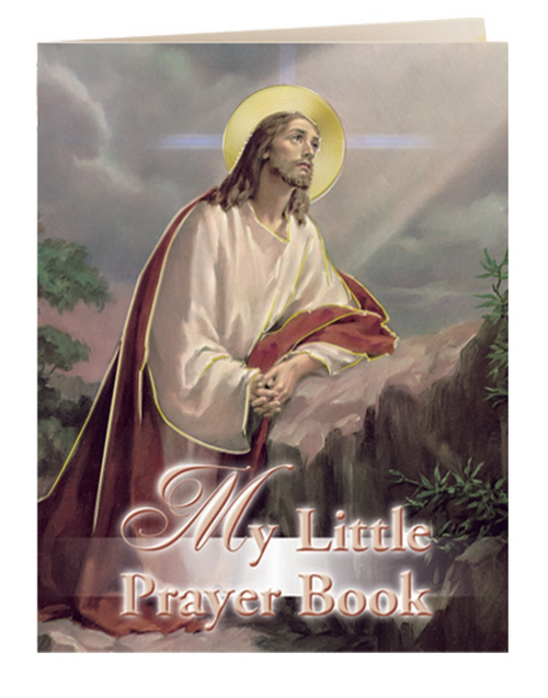 My Little Book of Prayers offers a Jesus, Mary and all the saints themed version. Containing over 28 faith-forming, popular prayers, this book features beautiful color illustration, and is conveniently pocket-sized.