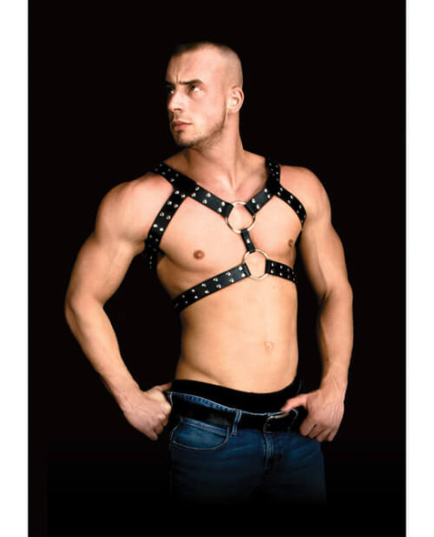 Shots Andreas Male Masterpiece Chest Harness