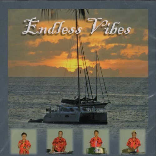 Endless Vibes - The Vibes