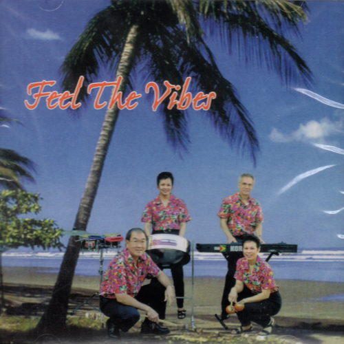 Feel The Vibes - The Vibes
