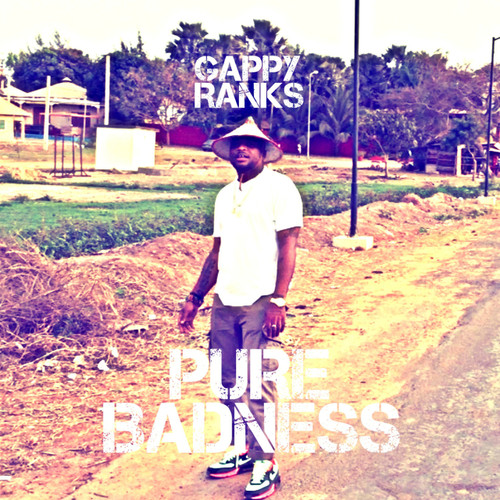 Pure Badness - Gappy Ranks