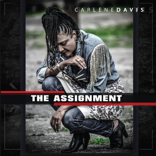 The Assignment - Carlene Davis