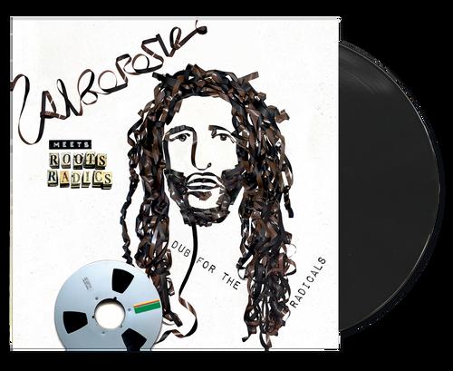 Alborosie Meets Roots Radics - Dub For The Radic - Alborosie (LP)