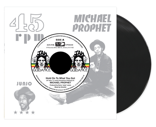 Hold On To What You Got - Michael Prophet (7 Inch Vinyl)