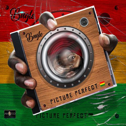 Picture Perfect 2cd - Bugle