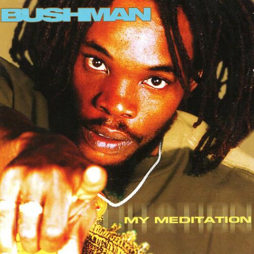My Meditation - Bushman (LP)