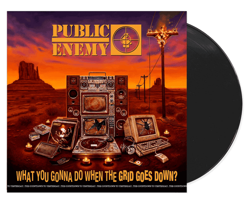 What You Gonna Do When The Grid Goes Down? - Public Enemy (LP)