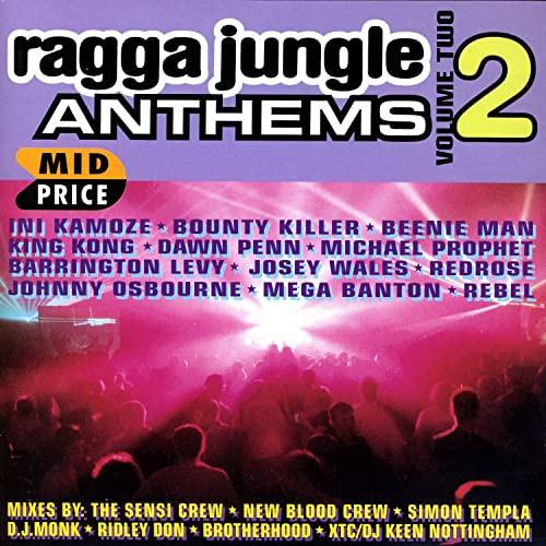 Ragga Jungle Anthems 2 - Various Artists