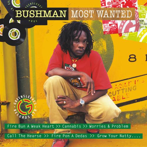 Most Wanted Bushman - Bushman