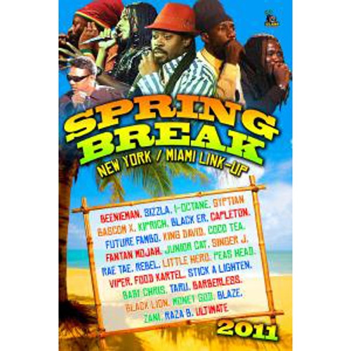 Spring Break 2011 - New York & Miami Link-up - Various Artists (DVD)