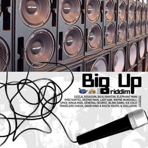 Big Up - Various Artists