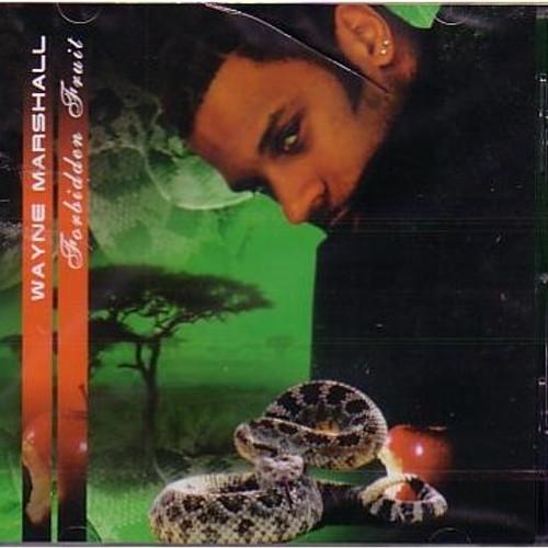 Forbidden Fruit - Wayne Marshall