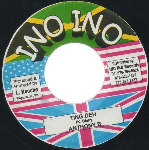 Ting Deh - Anthony B (7 Inch Vinyl)