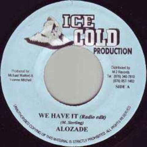 We Have It - Alozade (7 Inch Vinyl)