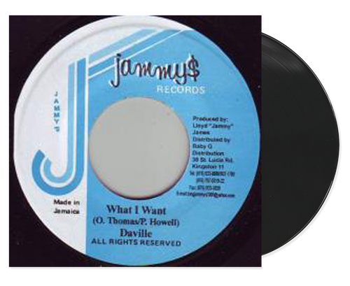 What I Want - Daville (7 Inch Vinyl)