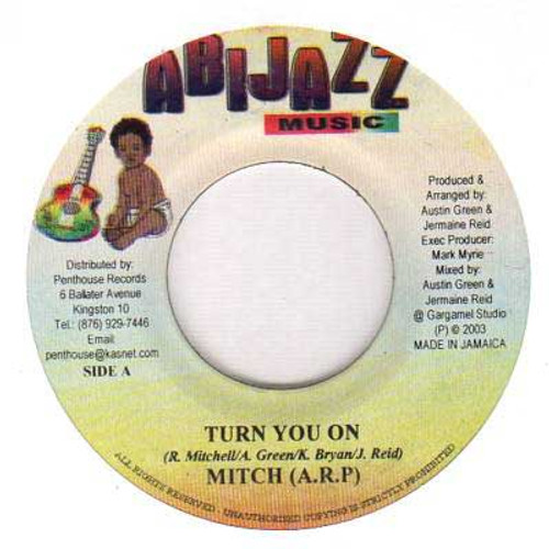 Turn You On - Mitch (7 Inch Vinyl)
