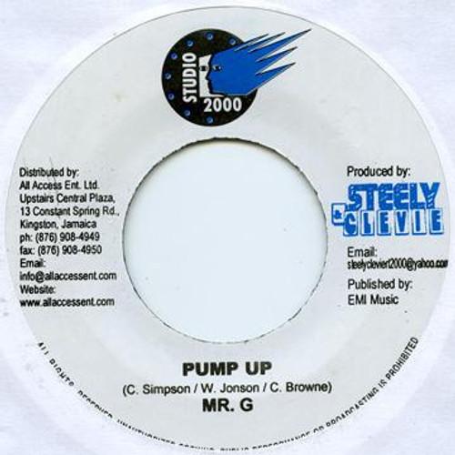 Pump Up - Mr.G (7 Inch Vinyl)