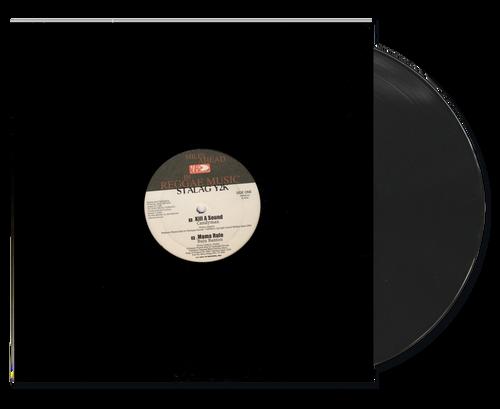Stalag Y2k - Various Artists (12 Inch Vinyl)