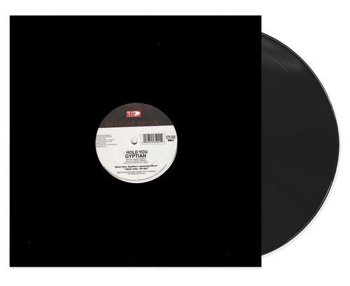 Hold You - Gyptian (12 Inch Vinyl)