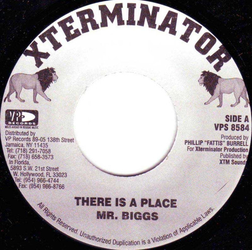 There Is A Place - Mr. Biggs (7 Inch Vinyl)