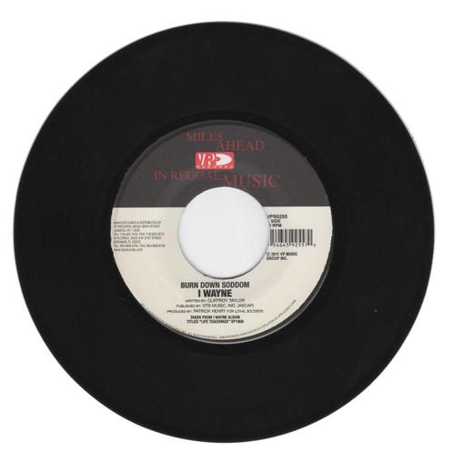 Burn Down Soddom - I Wayne (7 Inch Vinyl)
