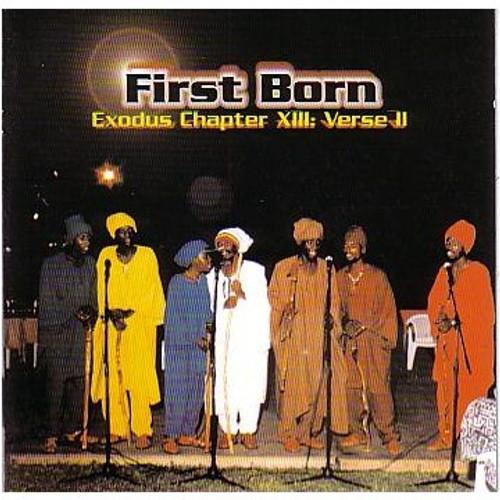 Exodus Chapter Xiii:verse Ii - First Born