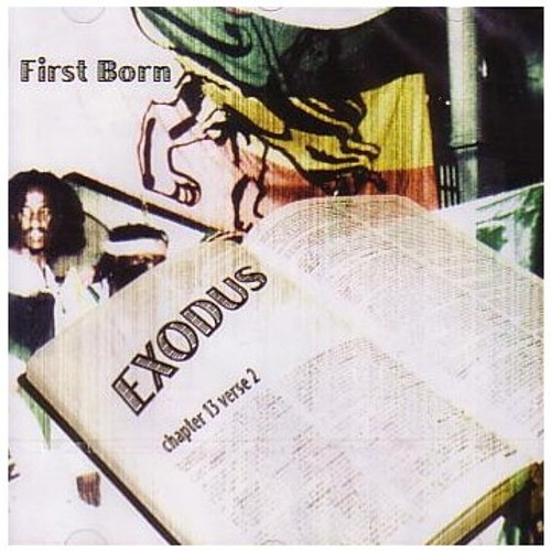 Exodus Chapter 13 Verse 2 - First Born