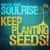 Soulrise Keep Planting Seeds - Martin Zobel