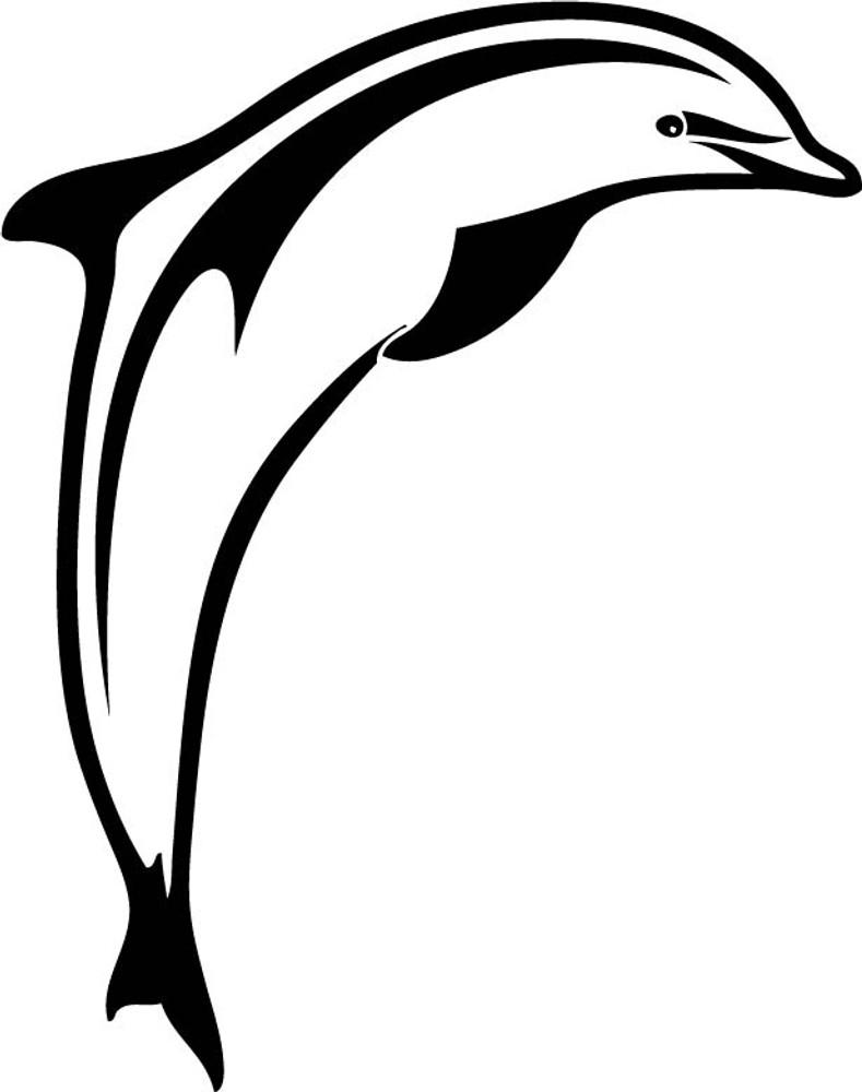 animal decals, sea decals, ocean decals, dolphin decals, fish decals, car decals, car stickers, decals for cars, stickers for cars, window stickers, vinyl stickers, vinyl decals