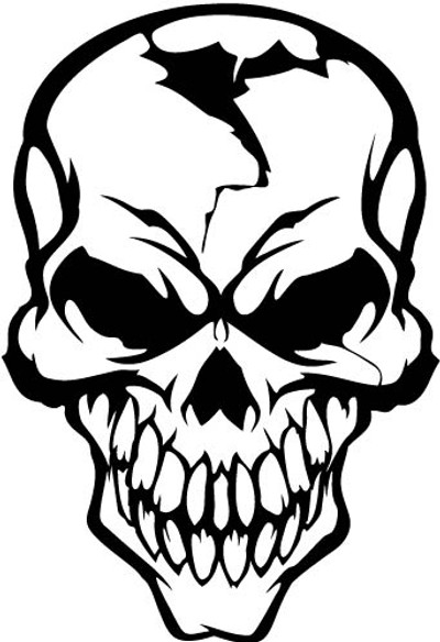 skull decals, car decals, car stickers, decals for cars, stickers for cars, window stickers, vinyl stickers, vinyl decals