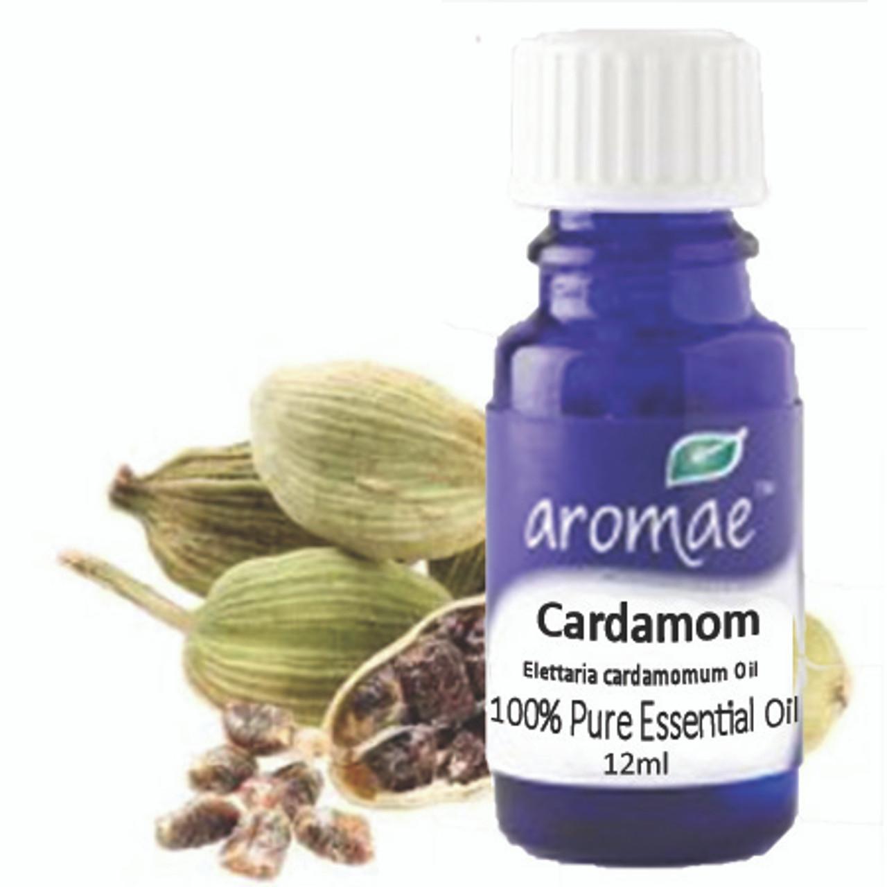 Cardamom Essential Oil 100 Rue Essential Oil 12ml