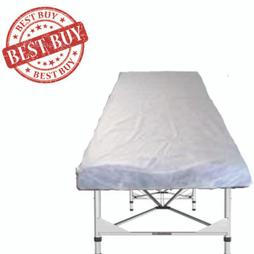 Fitted Disposable Sheets Bulk Buy 100