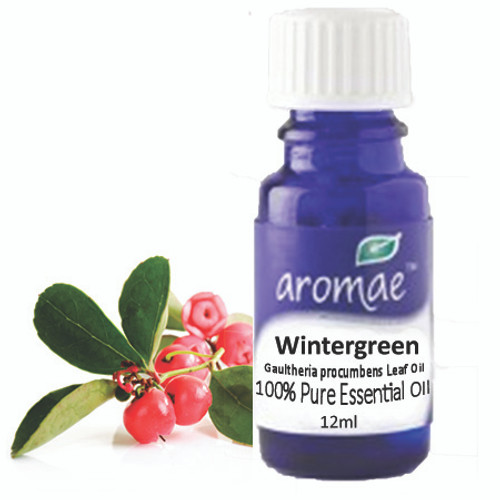 Wintergreen Essential Oil - Aromae 12ml