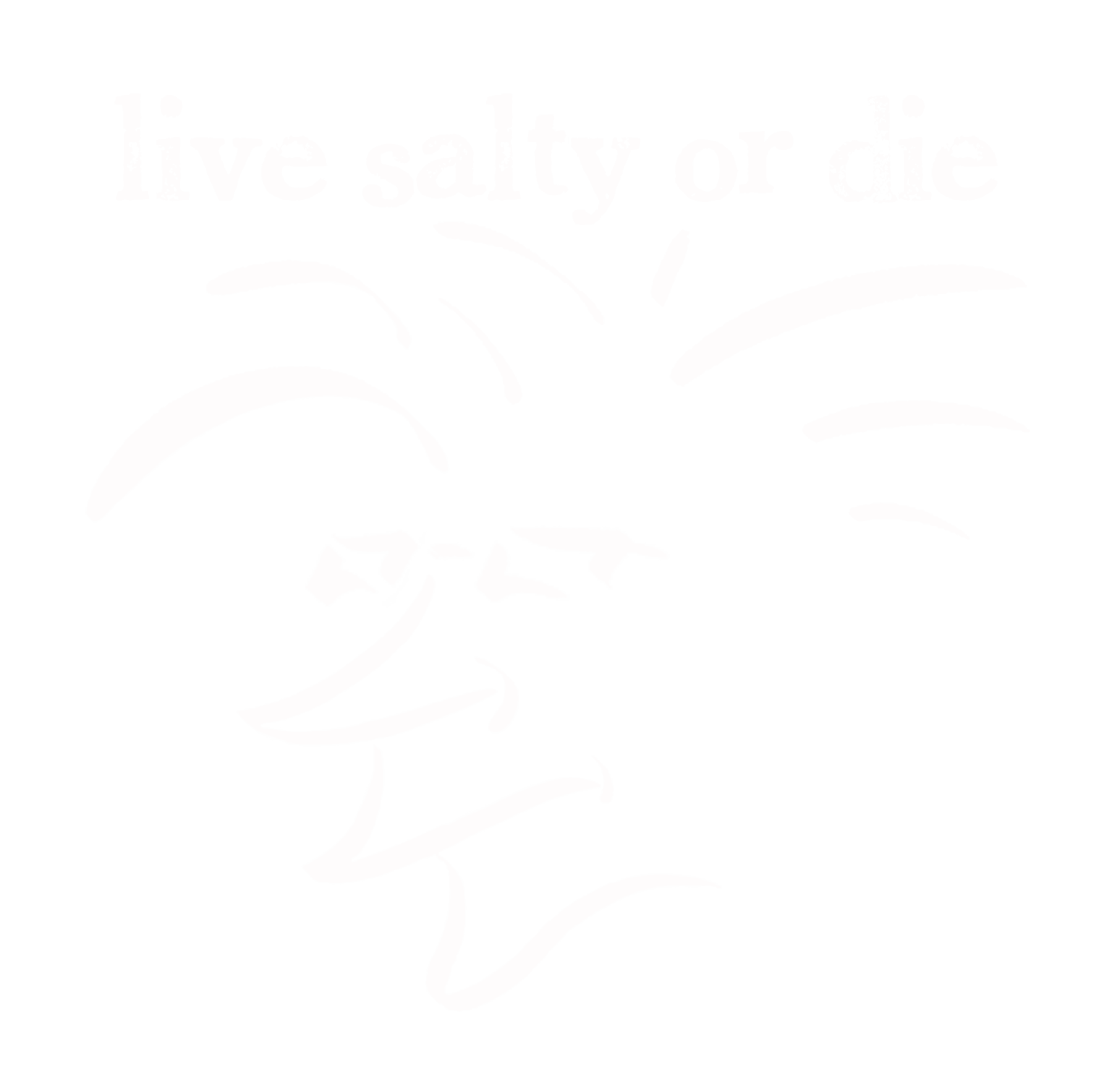saltyheadwhite.png