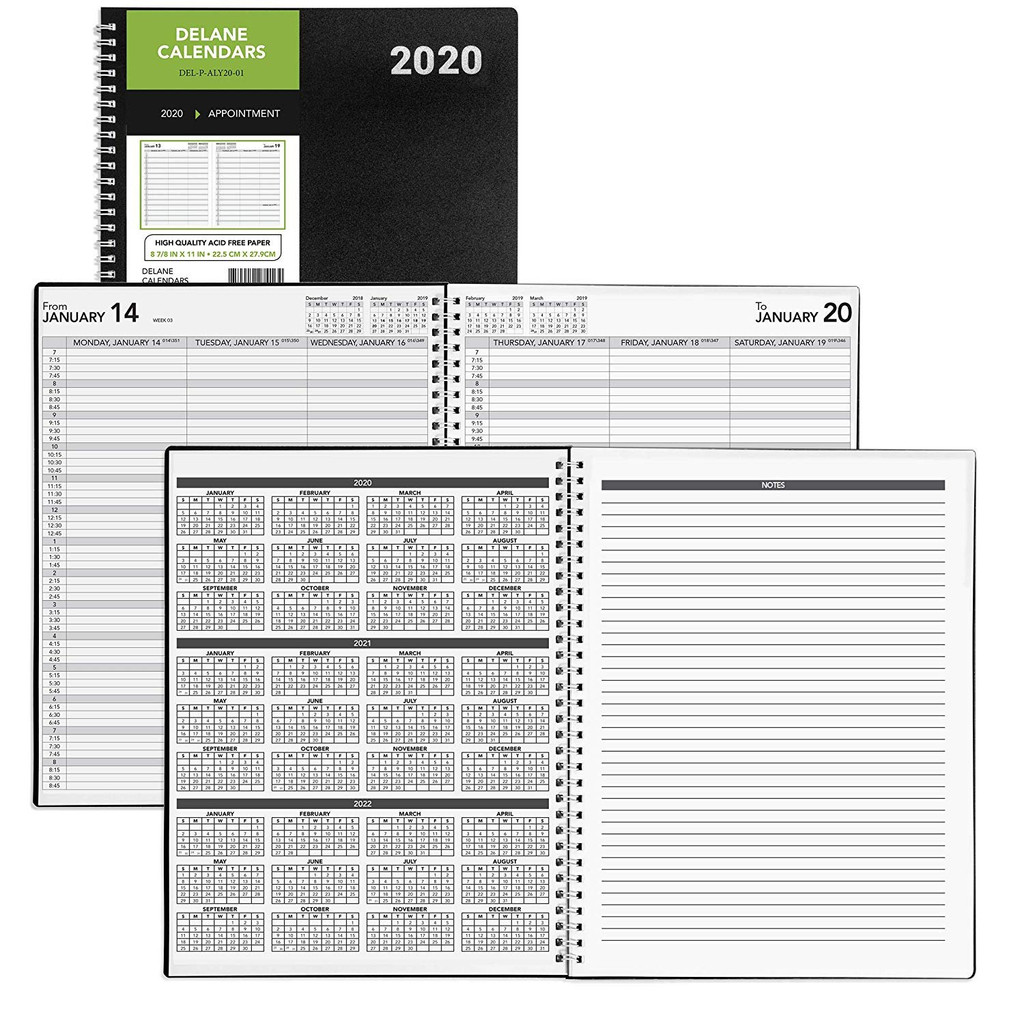 2020 Appointment Delane Planner