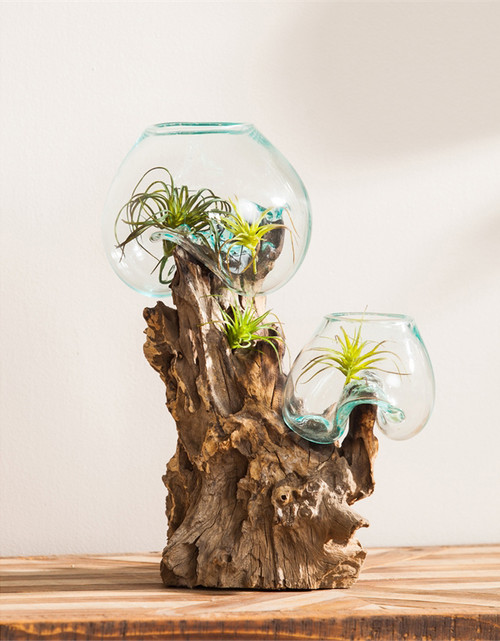 Two Glass Votives with Driftwood Stand