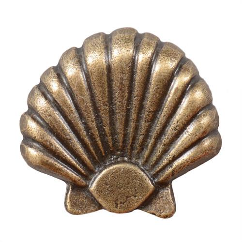 Large Seashell Cabinet Knob