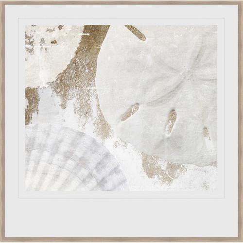 Seashell Medley Framed Print