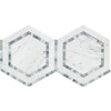 Carrara White Marble - Hexagon Mosaic Tile - Combination with Blue Gray Bardiglio - POLISHED