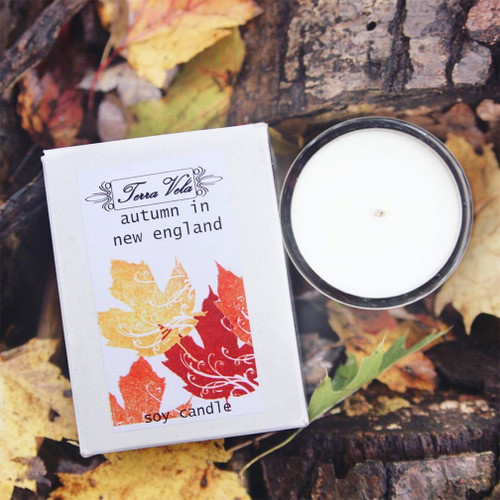 An Autumn blend that brings a warm balance to the crisp air and glorious colors of the turning leaves in the Northeast. A cinnamon, nutmeg, birch, hickory, maple and pumpkin accord goes with base notes of a smoky stone fireplace. Soy wax content is 8.5 oz resulting in up to 50 hours burn time.