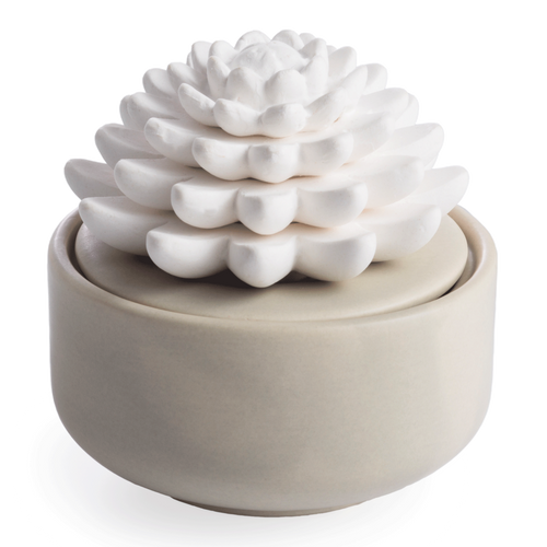 A delicate porcelain Succulent atop a warm gray matte glazed dish. Porcelain Essential Oil Diffusers can be filled with 100% pure essential oils, or with water and oil to diffuse fragrance the lasts 2 weeks or more. A porcelain botanical rests on a ceramic base to bring a natural beauty to your space as you enjoy the aromatherapy benefits of 100% pure essential oils.
