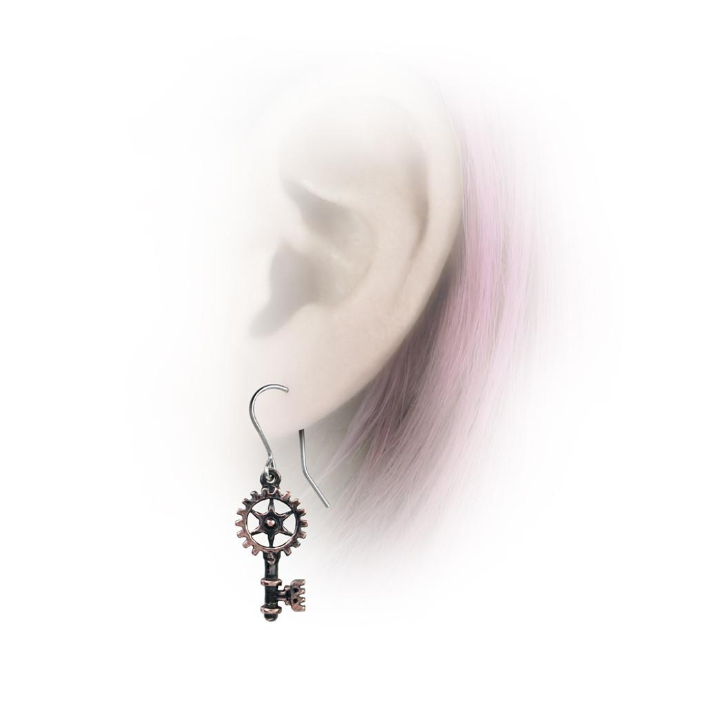 E377 - Clavitraction Earrings
