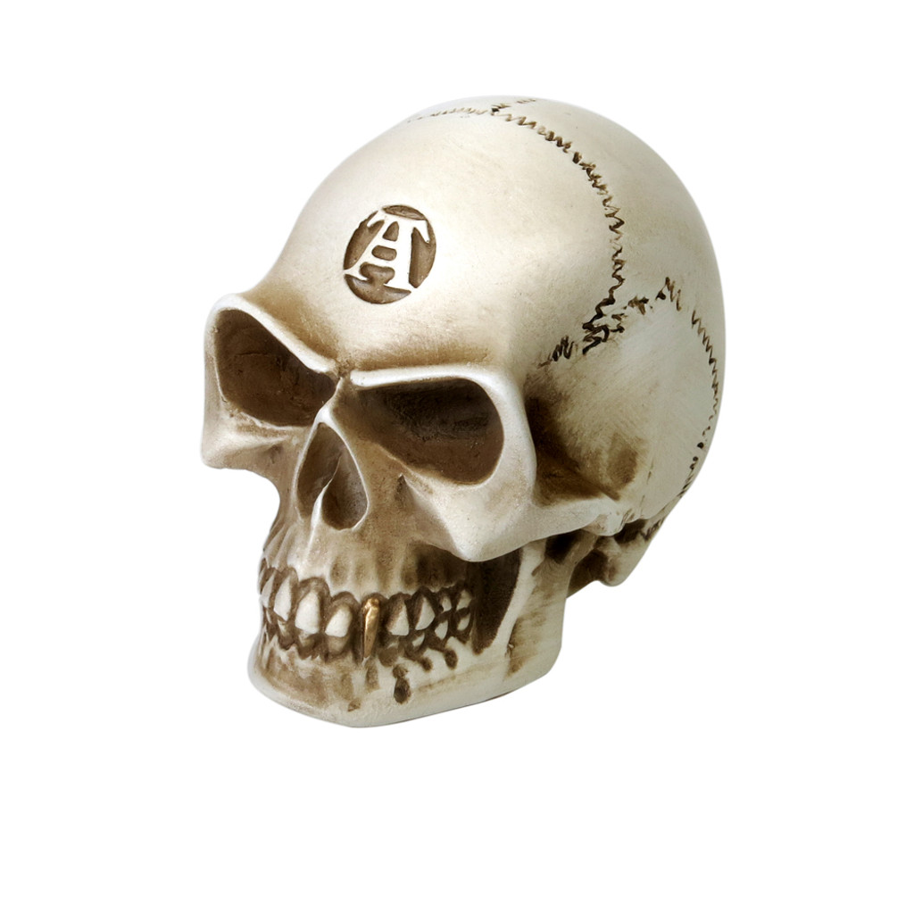 Skull Paperweight