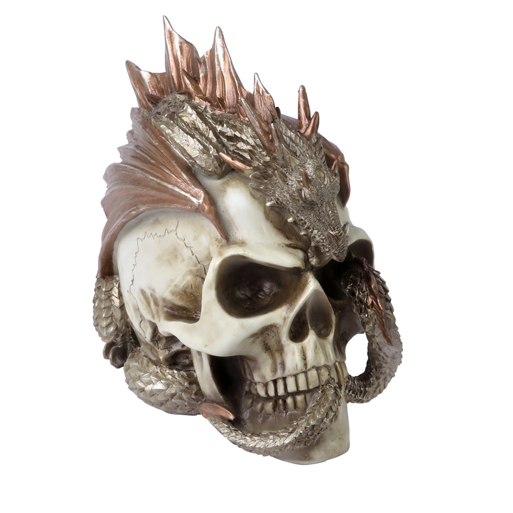 V72 - Dragon Keeper's Skull