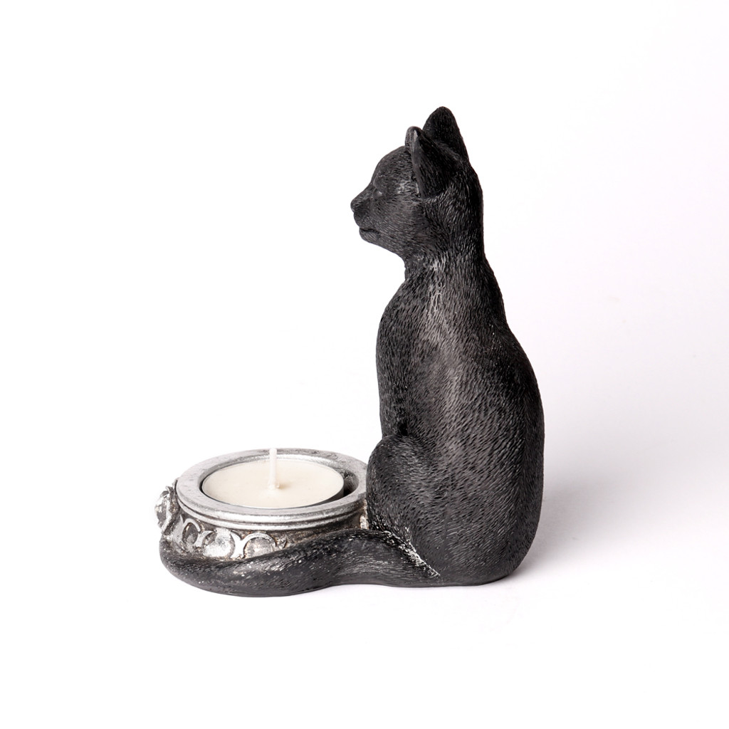 V100 - Black Cat T - Light