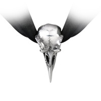P736 - Rabeschadel Choker