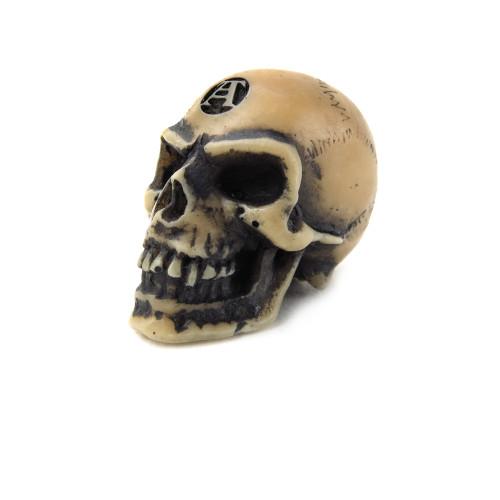 V2 - Lapillus Worry Skull